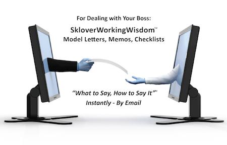 Sklover Working Wisdom1