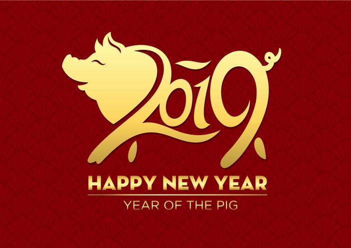 Sklover Working Wisdom 2019 Year of Pig