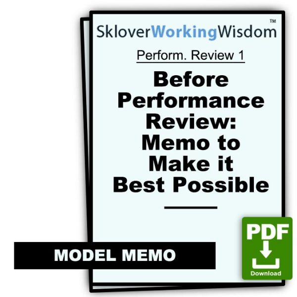 Sklover Working Wisdom memo to make best performance review possible