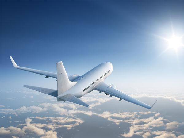 Sklover Working Wisdom Relocation Expatriate Assignments