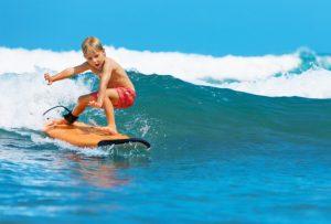 Sklover Working Wisdom Surfing